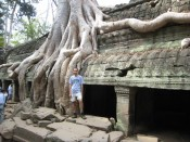 "Ta Prohm, the ostensible ""Jungle Temple"" (but see Beng Mealea below)"