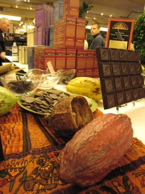 a cocoa pod at the Guittard table.  (the chocolate samples behind the pod are 91%, and were surprisingly smooth.)