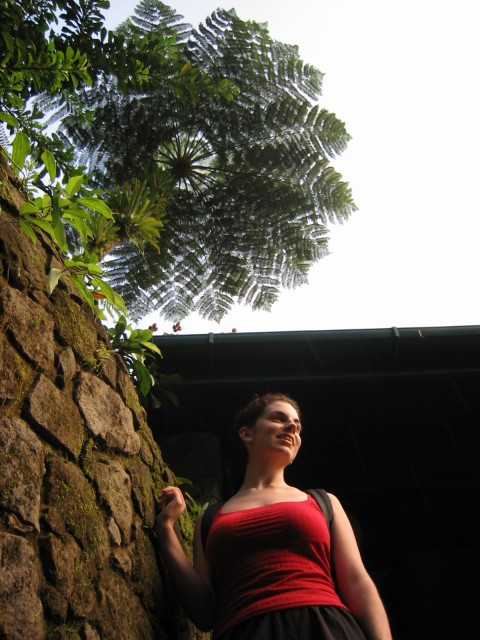 finally in Dominica! In the gardens at Papillote Wilderness Retreat