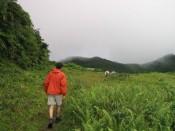 hiking to the Freshwater Lake