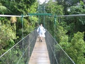 crossing the suspension bridge over Breakfast Gorge