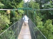 crossing the suspension bridge over Breakfast Gorge
