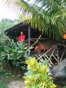 """our """"nature bungalow"""" at Hibiscus Valley Inn"""