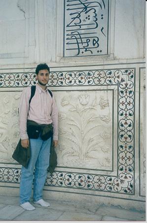 detail of the Taj Mahal, Agra
