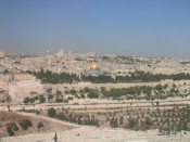 view of Jerusalem from Mt. Olive