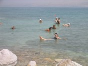 floating in the slimy waters of the dead sea