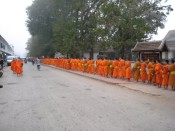 Luang Prabang, morning monk procession