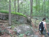hiking through the Sourlands Mountain Preserve