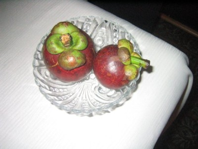 our mangosteen tasting