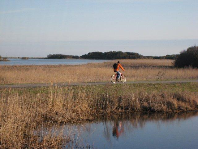 biking the Black Duck Trail