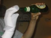 ever seen a drunk sock puppet?