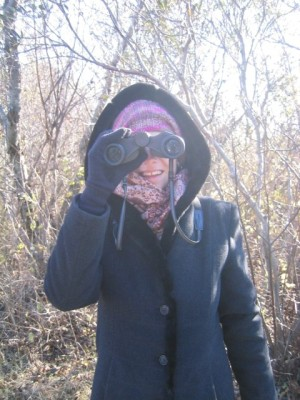 very serious birdwatching at the Parker River NWR (on Plum Island in Newburyport, MA)